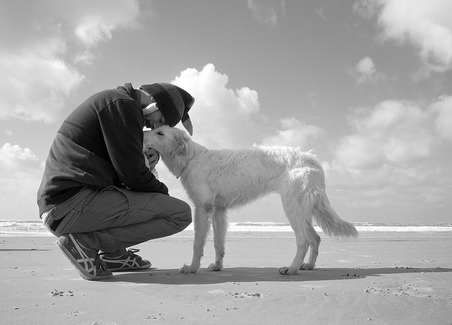 image man and dog sharing a moment